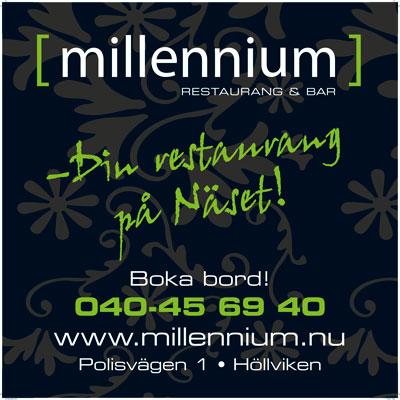 Millenniumskylt1x1m.jpg
